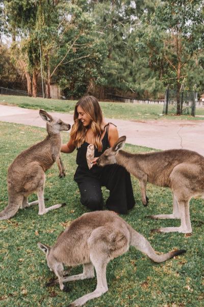 Australia 2018 Trip Recap